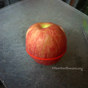 keep apples from turning brown in lunches